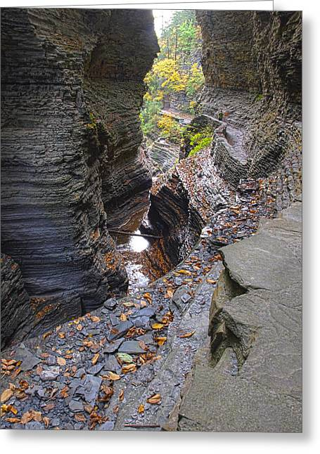 Schuyler County New York Greeting Cards - Low Water Greeting Card by Joshua House