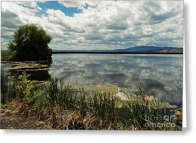 Wildlife Refuge. Digital Art Greeting Cards - Lower Klamath Lake Greeting Card by Methune Hively