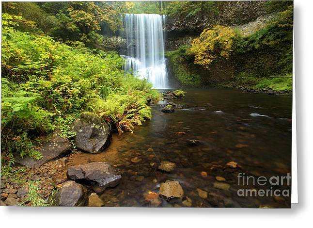 State Parks In Oregon Greeting Cards - Lower South Falls Greeting Card by Adam Jewell