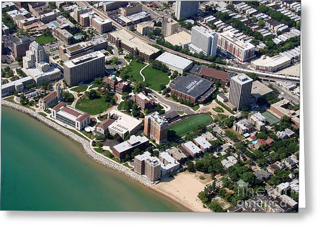 Bill Lang Greeting Cards - L-007 Loyola University Chicago Illinois Greeting Card by Bill Lang