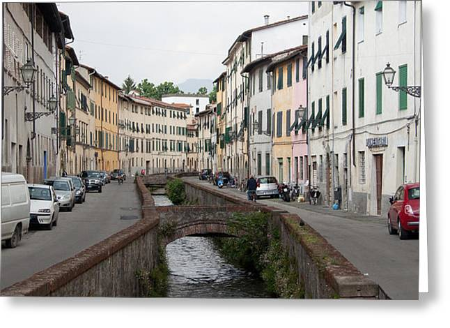 Lucca Greeting Card by Steven Gray