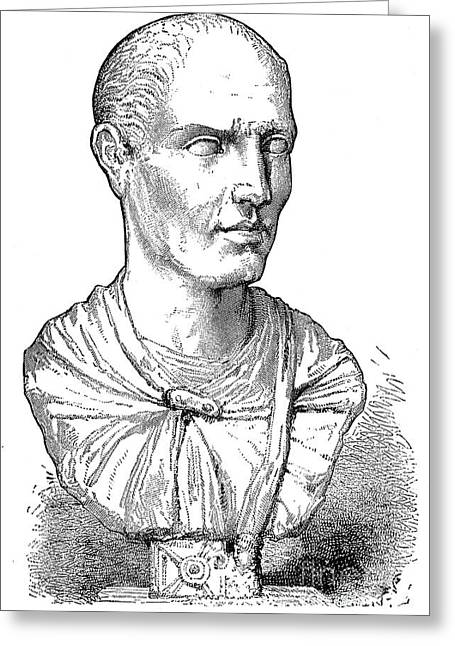 Statue Portrait Greeting Cards - Lucius Licinius Lucullus Greeting Card by Granger