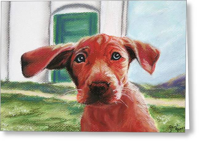Lucky Dogs Greeting Cards - Lucky Greeting Card by Gayle  George