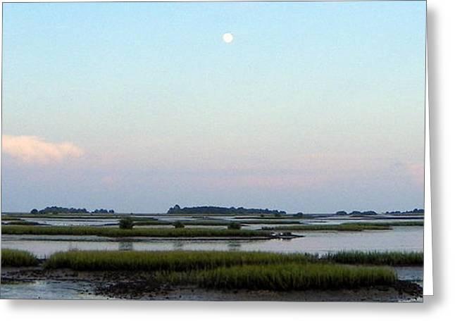 Cedar Key Greeting Cards - Lunar Day Landscape I Greeting Card by Sheri McLeroy