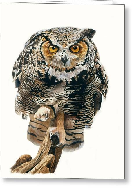 Owl Eyes Greeting Cards - Lunchtime - Great Horned Owl Greeting Card by Bob Nolin