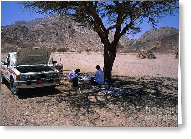 Sinai Photographs Greeting Cards - Lunchtime in the Desert of Sinai Greeting Card by Heiko Koehrer-Wagner