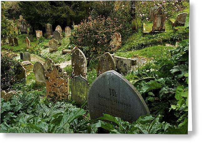 Lush Green Greeting Cards - Lush Plants Grow Around Old Tombstones Greeting Card by Jim Richardson