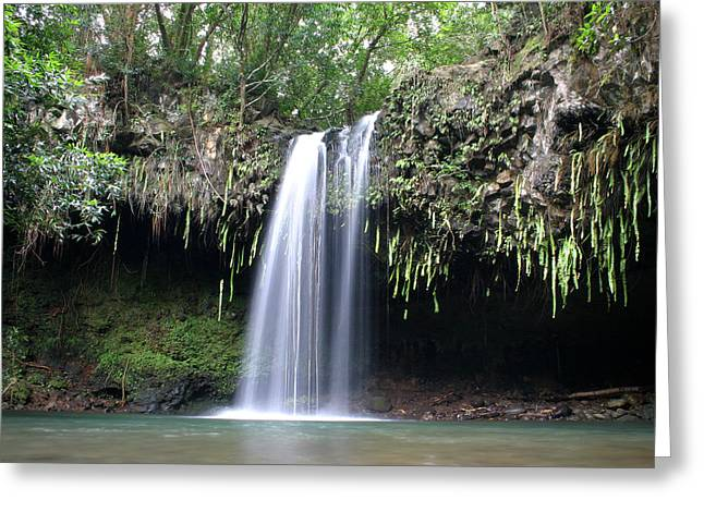 North Shore Greeting Cards - Lush tropical waterfall Twin Falls on Maui Hawaii Greeting Card by Pierre Leclerc Photography