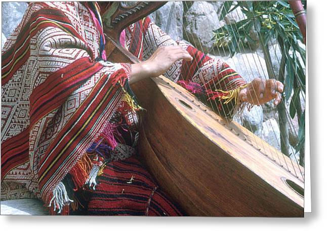 Lute Player Greeting Card by Photo Researchers, Inc.