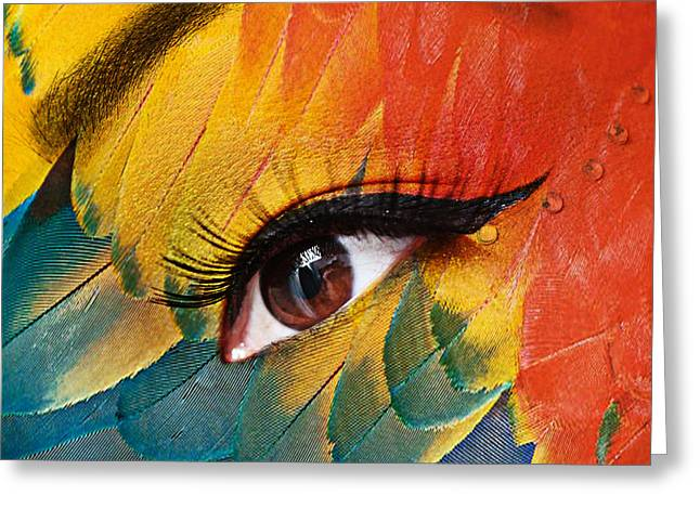 Eyelash Greeting Cards - Macaw Greeting Card by Yosi Cupano