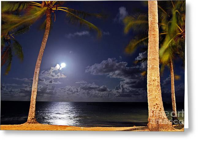 Turismo Greeting Cards - Maceio - Brazil - Ponta Verde Beach under the moonlit Greeting Card by Carlos Alkmin
