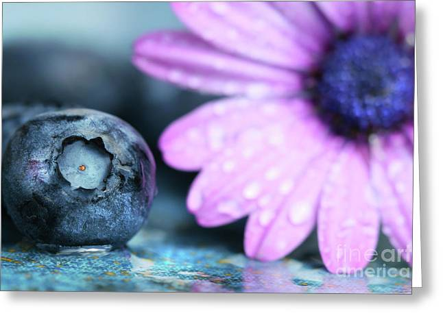 Black Berries Greeting Cards - Macro shot of a blueberry Greeting Card by Sandra Cunningham