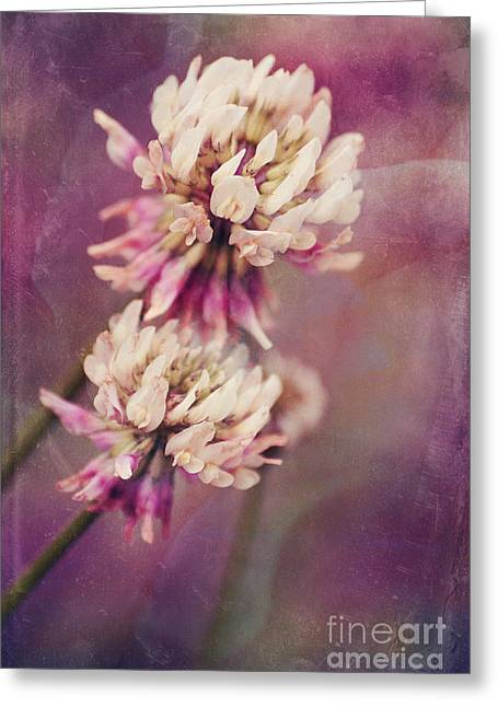 Flora Photographs Greeting Cards - Made For Each Other Greeting Card by Aimelle