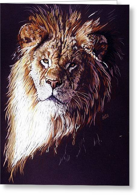 Drawings Greeting Cards - Maestro Greeting Card by Barbara Keith