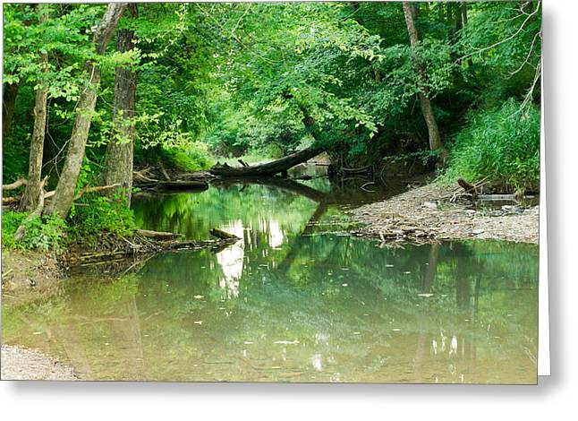 West Fork Greeting Cards - Magic Pond Greeting Card by Douglas Barnett