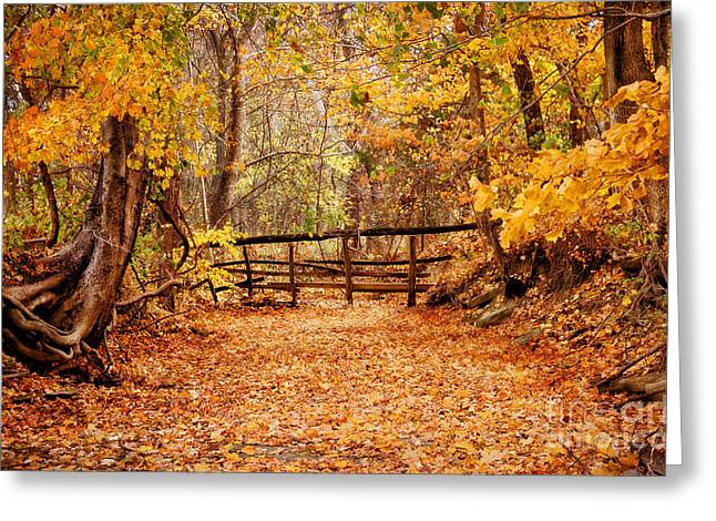 Magical Autumn Greeting Card by Cheryl Davis
