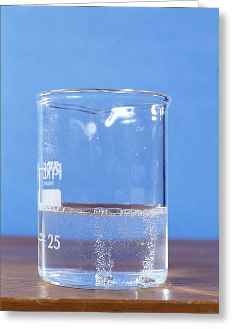Fizz Greeting Cards - Magnesium Reacting With Water Greeting Card by Andrew Lambert Photography