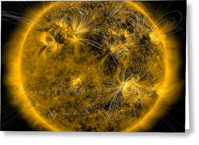 Magnetic Field Lines On The Sun Greeting Card by Stocktrek Images