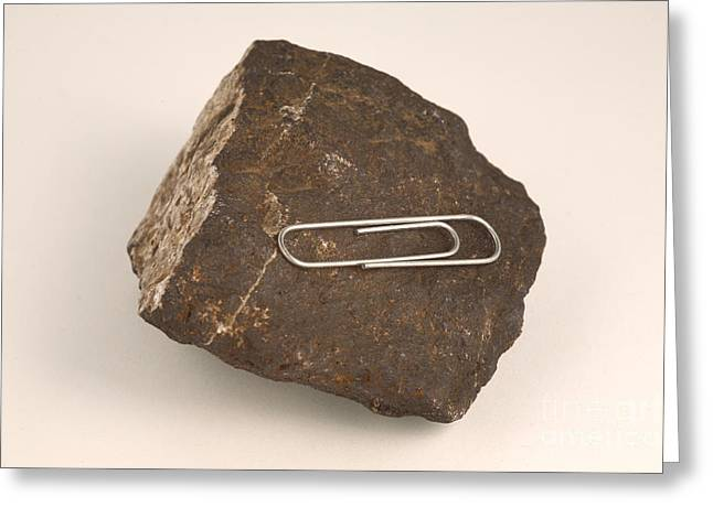 Attract Greeting Cards - Magnetite And Paper Clip Greeting Card by Ted Kinsman