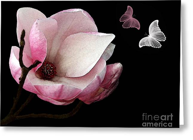 Magnolia With Butterflies Greeting Card by Kaye Menner