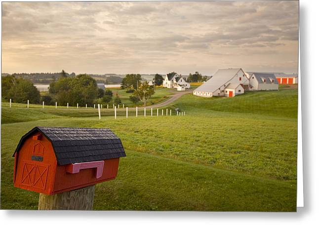 Mayfield Greeting Cards - Mail Box On Farm Land, Mayfield, Prince Greeting Card by John Sylvester