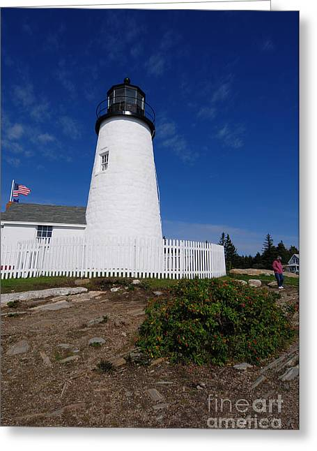 Maine Lighthouses Greeting Cards - Maine 47 Greeting Card by Terri Winkler