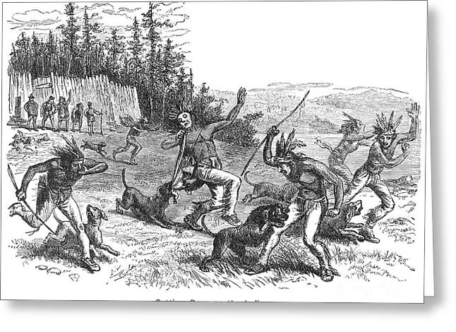 Attack Dog Greeting Cards - Maine: Attacking Native Americans Greeting Card by Granger
