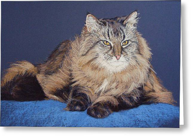 Maine Pastels Greeting Cards - Maine Coon Kitty Greeting Card by Kay Ridge