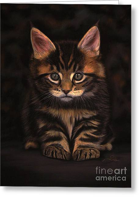 Maine Pastels Greeting Cards - Maine Coon Kitty Greeting Card by Sabine Lackner