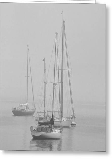 Sailboat Art Greeting Cards - Maine Sailboats on a Foggy Morning Greeting Card by Randall Nyhof