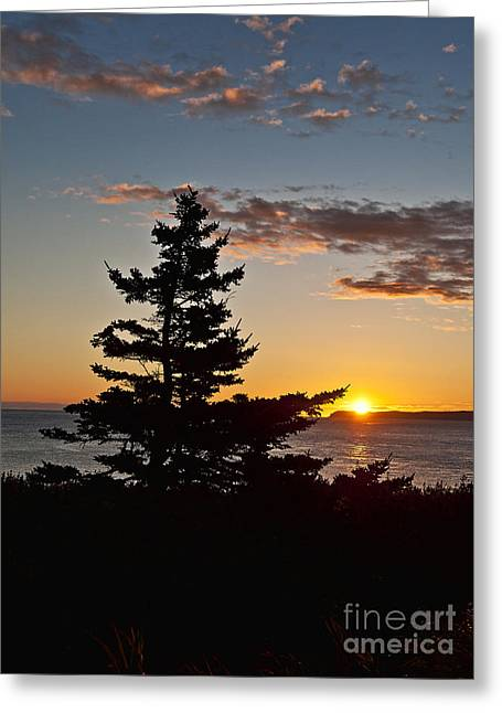 Lubec Greeting Cards - Maine Sunrise Greeting Card by John Greim