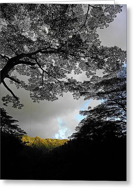 Manoa Falls Greeting Cards - Majestic Manoa Falls Greeting Card by Elizabeth Hoskinson
