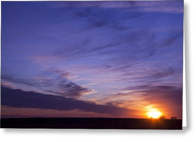 Majestic View Greeting Card by Toni Hopper