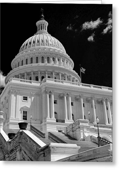 Capitol Greeting Cards - Make Good Use of It Greeting Card by Mitch Cat