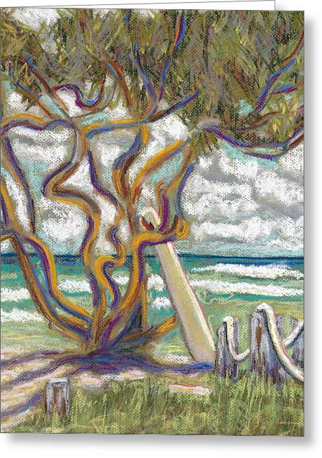 Beach Landscape Pastels Greeting Cards - Malaekahana Tree Greeting Card by Patti Bruce - Printscapes
