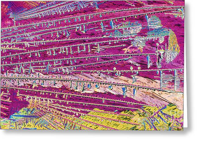 Transmitted Light Micrograph Greeting Cards - Malathion Greeting Card by Michael W. Davidson