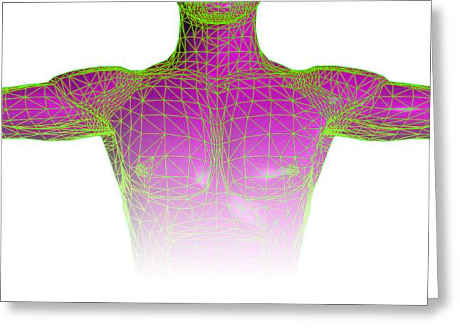 Chest Greeting Cards - Male Torso Body Map Greeting Card by Laguna Design