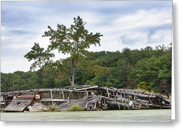 Mallow Greeting Cards - Mallows Bay on the Potomac River - Ship Graveyard - Maryland Greeting Card by Brendan Reals