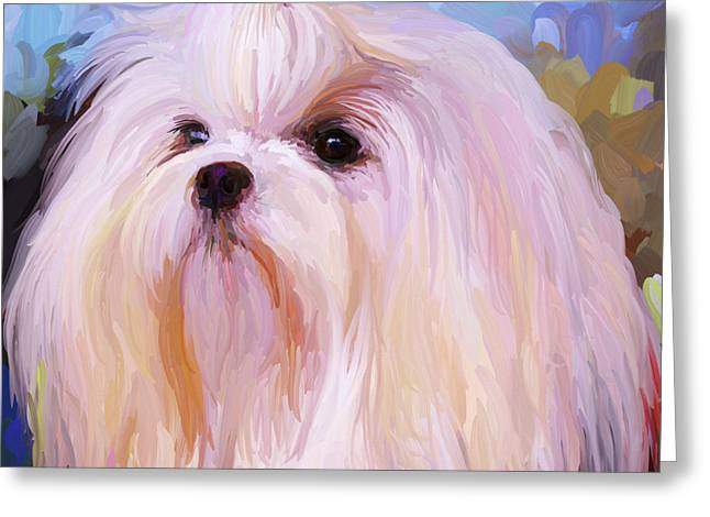 White Maltese Greeting Cards - Maltese Portrait - Square Greeting Card by Jai Johnson
