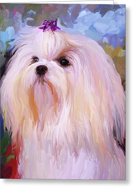 Maltese Greeting Cards - Maltese Portrait Greeting Card by Jai Johnson