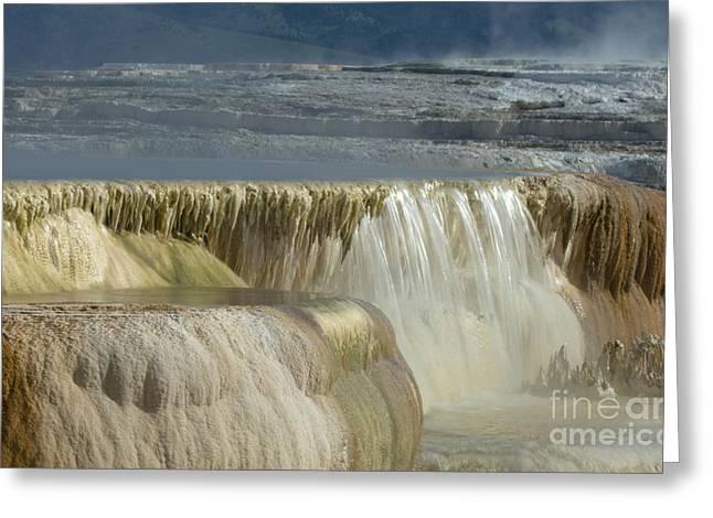 Runoff Greeting Cards - Mammoth Hot Springs - Yellowstone Greeting Card by Sandra Bronstein