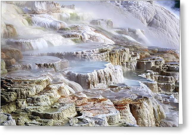 Mammoth Terrace Greeting Cards - Mammoth Hot Springs Mineral Terrace Greeting Card by G. Brad Lewis