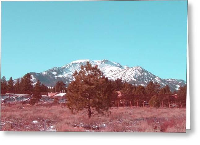 Mountain Road Greeting Cards - Mammoth Mountain Greeting Card by Naxart Studio