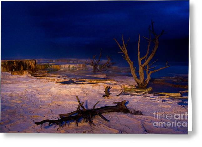 Mammoth Terrace Greeting Cards - Mammoth Upper Terrace Light Painted v1 Greeting Card by Katie LaSalle-Lowery