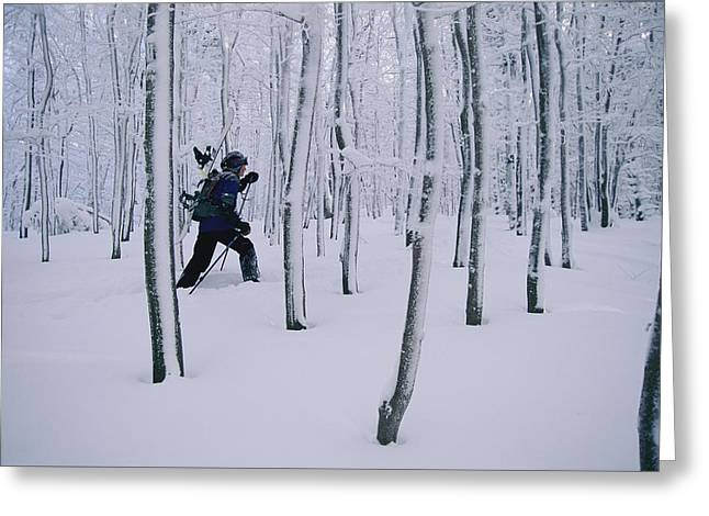 Woodland Scenes Greeting Cards - Man Carrying Snowboard While Greeting Card by Skip Brown