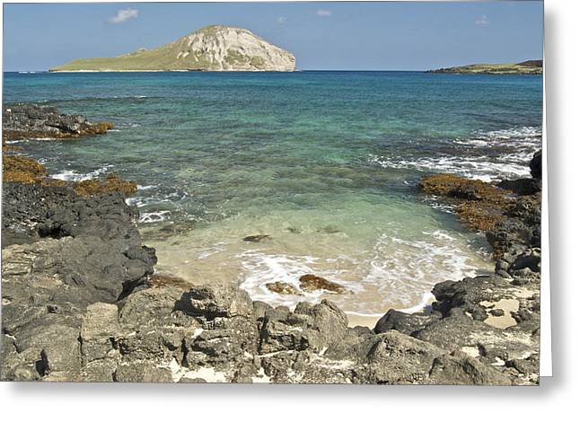Seabirds Greeting Cards - Manana Island View 0068 Greeting Card by Michael Peychich