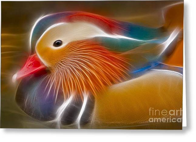 Ducks Digital Art Greeting Cards - Mandarin Glow Greeting Card by Susan Candelario