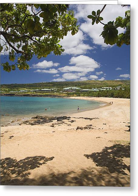 Flat Four Greeting Cards - Manele Bay Greeting Card by Ron Dahlquist - Printscapes