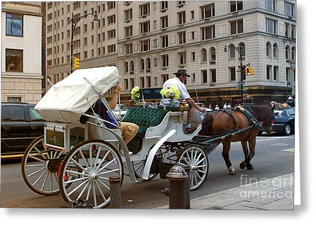 Horse And Buggies Greeting Cards - Manhattan Buggy Ride Greeting Card by Madeline Ellis
