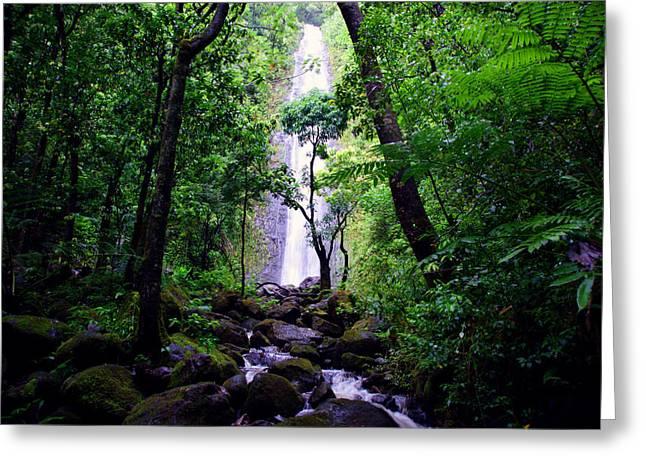 Manoa Falls Greeting Cards - Manoa Falls Greeting Card by Kevin Smith